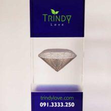 cơ sở sản xuất khắc in hình cúp pha lê kim cương đẹp tphcm